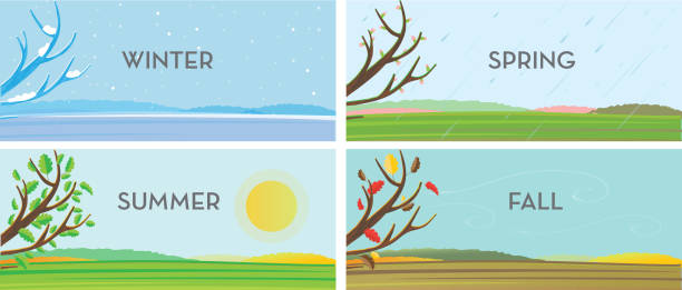 사계절 풍경 배경 설정 - four seasons stock illustrations