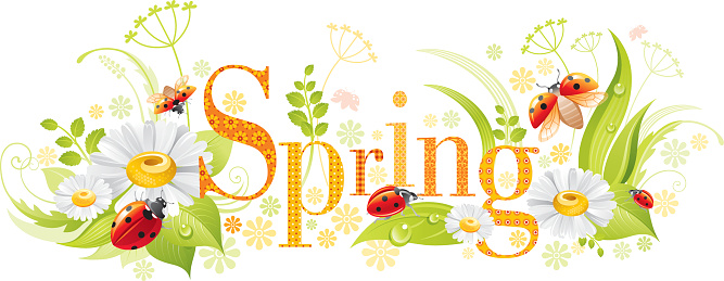 Four Seasons Spring Banner Stock Illustration - Download Image Now - iStock