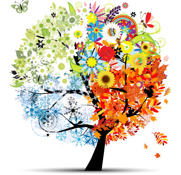 four seasons - spring, summer, autumn, winter. art tree beautiful - four seasons stock illustrations