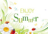 Four seasons: Summer banner with ladybug