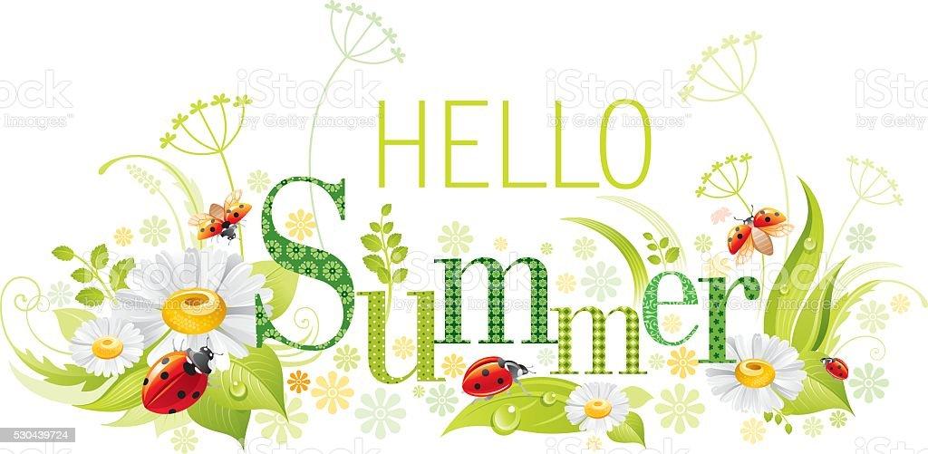 Four Seasons Summer Banner Ladybug Stock Illustration ...