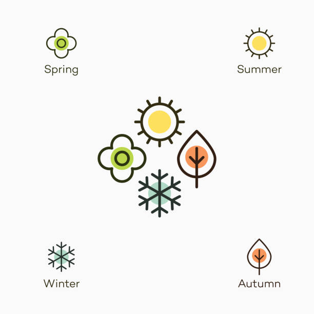 four seasons symbol with 4 colored icons - spring, summer, autumn and winter - cztery pory roku stock illustrations