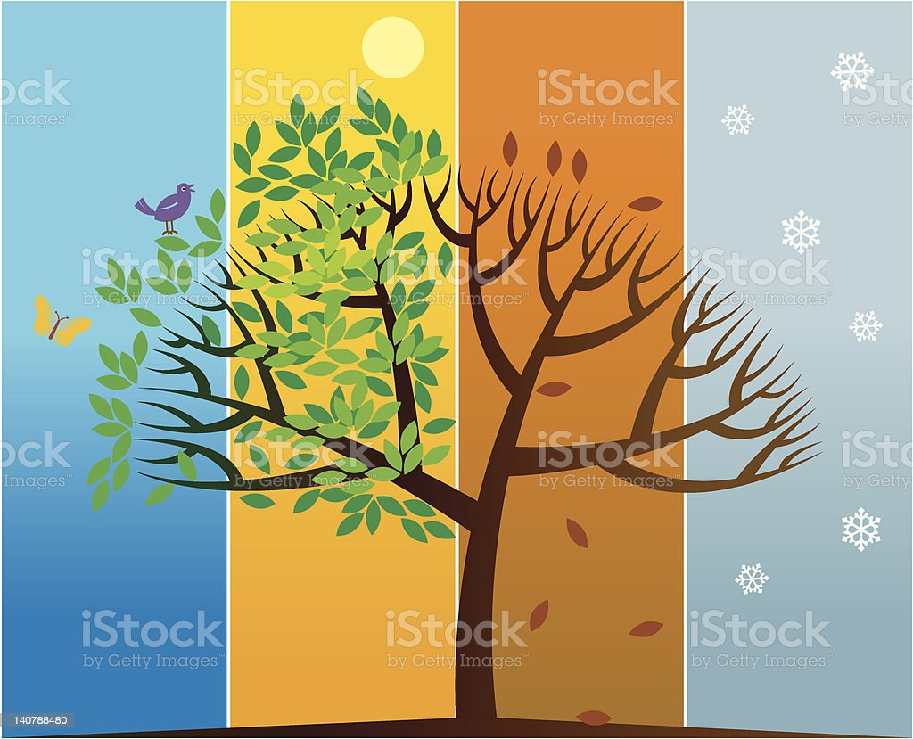 four seasons tree royalty-free four seasons tree stock vector art & more images of abstract