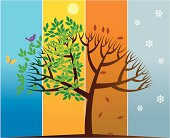 Spring, summer, autumn and winter are represented in the transformation of a tree.