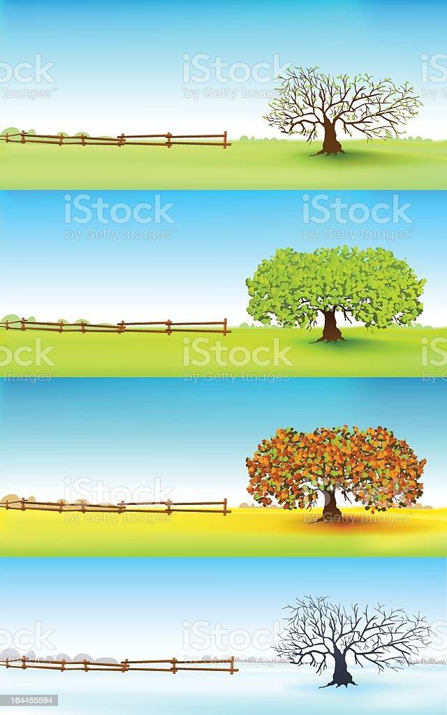illustration of a tree through four seasons