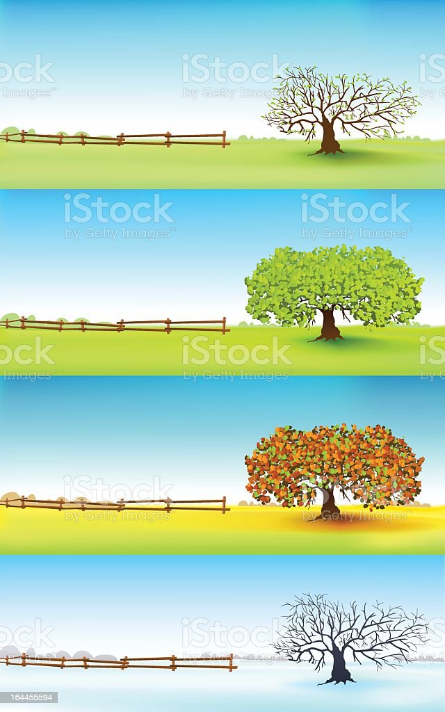 Four seasons tree vector art illustration