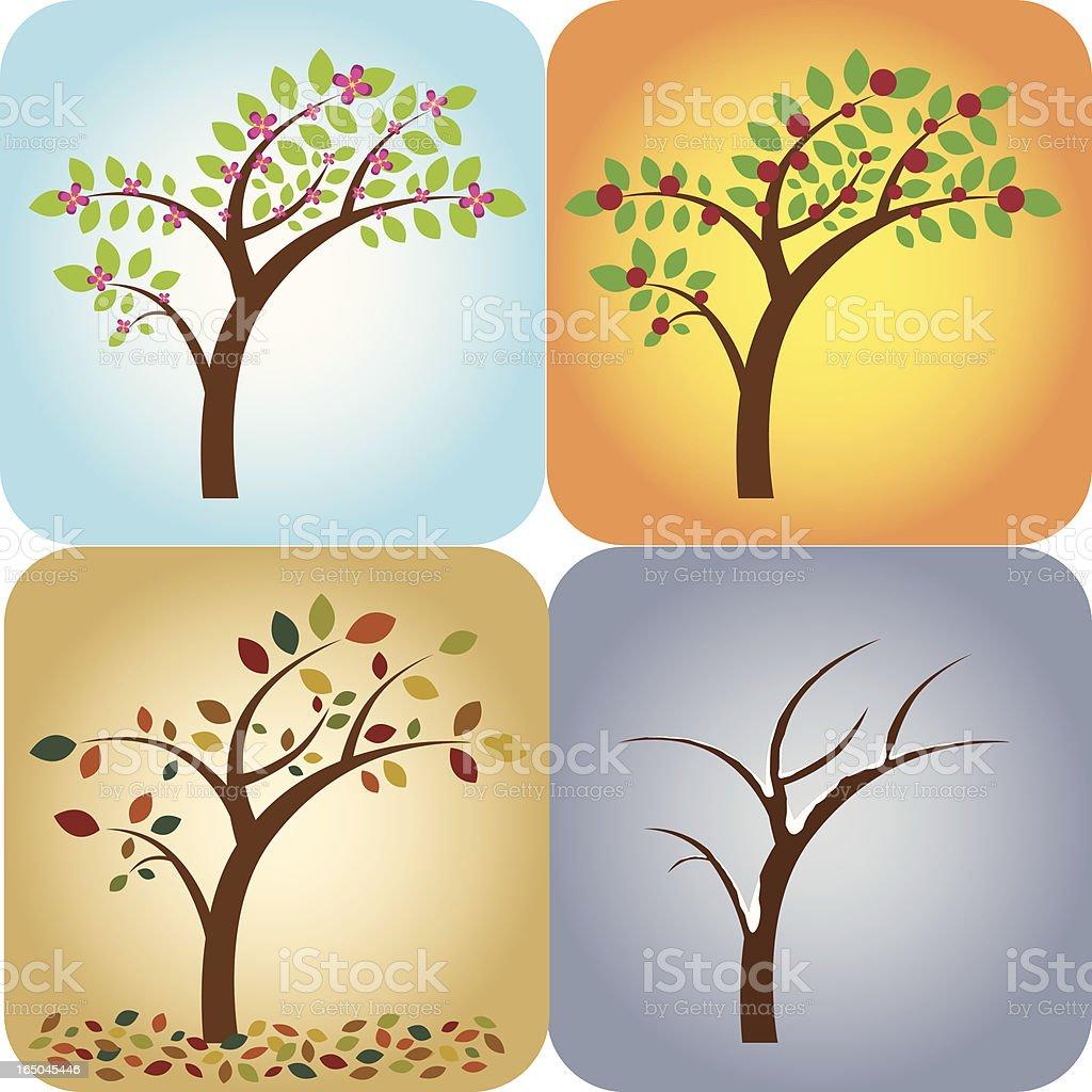 Four Seasons Tree royalty-free stock vector art