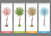 Small tree in 4 different seasons - vector. EPS 10. File contains transparences!