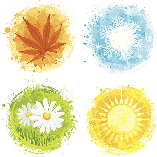 four seasons - four seasons stock illustrations