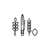 istock Four Species icon. Element of Jewish icon for mobile concept and web apps. Thin line Four Species icon can be used for web and mobile 1055361074