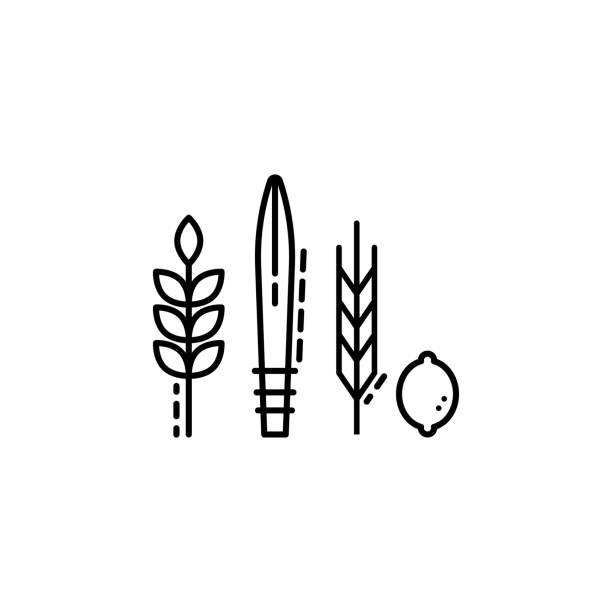 line art leaf black-and-white drawing plant clipart - Line Art, Leaf,  Blackandwhite, transparent clip art