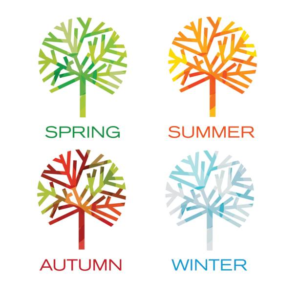 four trees as seasons. spring, summer,autumn and winter - cztery pory roku stock illustrations