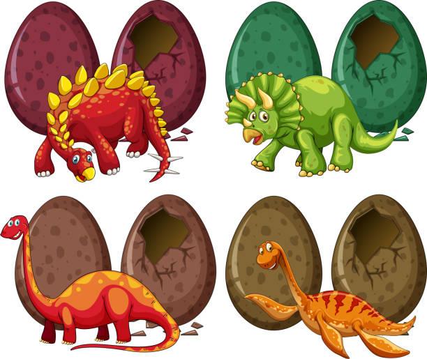 vier arten von dinosauriern und eiern - eiszeit stock-grafiken, -clipart, -cartoons und -symbole