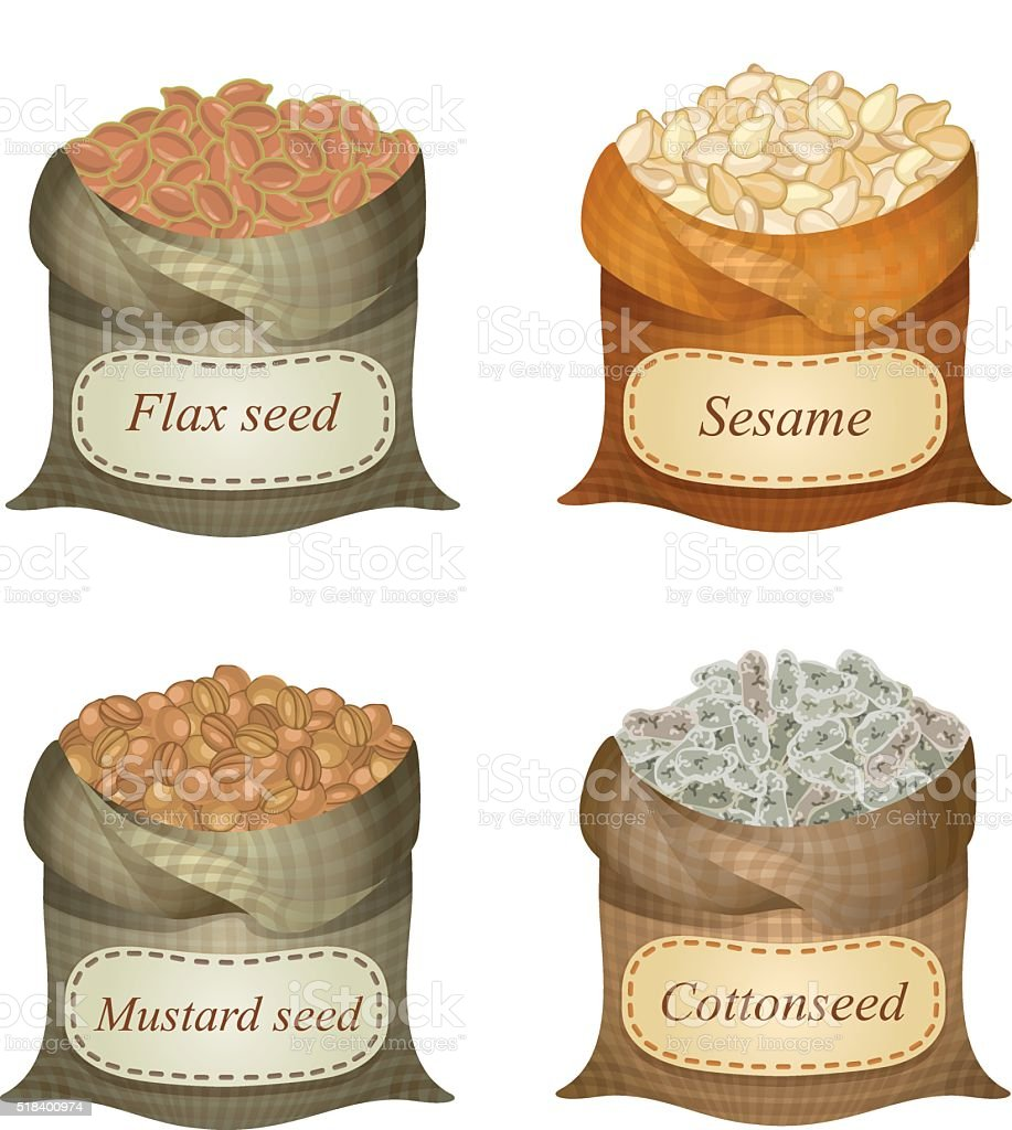 Four untied sacks with oil seeds and labels on them vector art illustration