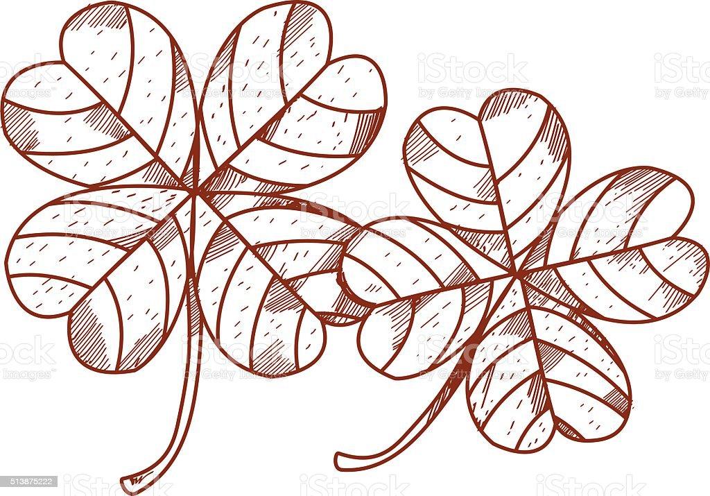 Cuatro Hojas De Trébol Illustracion Libre de Derechos 513875222   iStock
