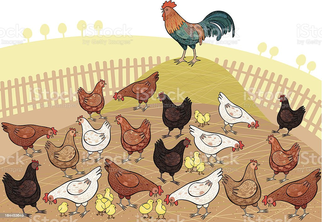 Fowls royalty-free stock vector art