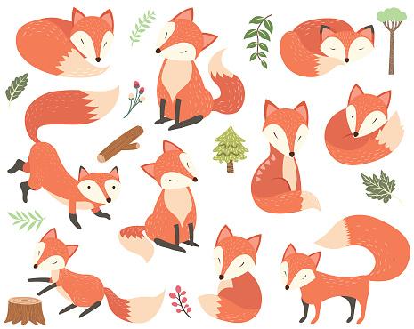 Fox Elements