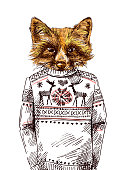 Fox in knitted sweater.