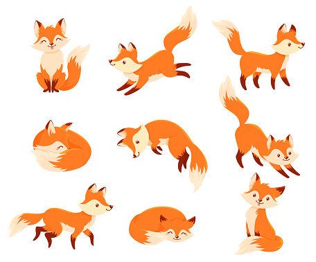 Foxes in different poses cartoon set. Cute little animal standing, sitting, running, jumping.