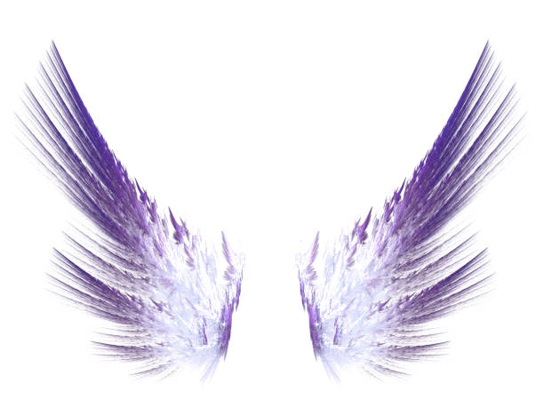 Fractal purple wings on white isolated background Fractal purple wings on white isolated background. Wings for the angel. For collages and work in digital programs. aircraft wing stock illustrations
