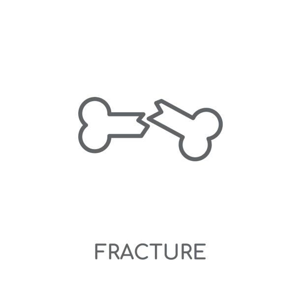 stockillustraties, clipart, cartoons en iconen met fractuur lineair icoon. modern overzicht fractuur logo concept op witte achtergrond van insurance collection - breuk