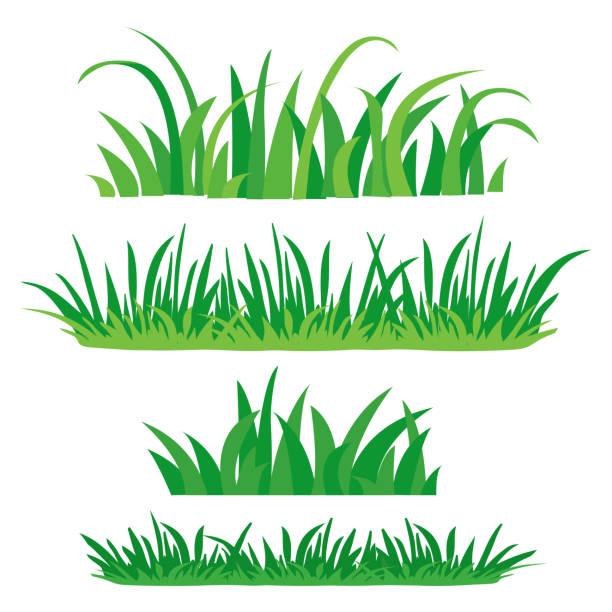 ilustrações, clipart, desenhos animados e ícones de fragmentos de grama verde. conjunto de elementos de design da natureza. conjunto de plano colorido, isolado no fundo branco. ilustração em vetor. - gramado terra cultivada