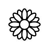 fragrant chrysanthemum icon vector. fragrant chrysanthemum sign. isolated contour symbol illustration