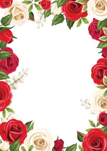 Framehintergrund mit roten und weißen Rosen. Vektor-Illustration. – Vektorgrafik