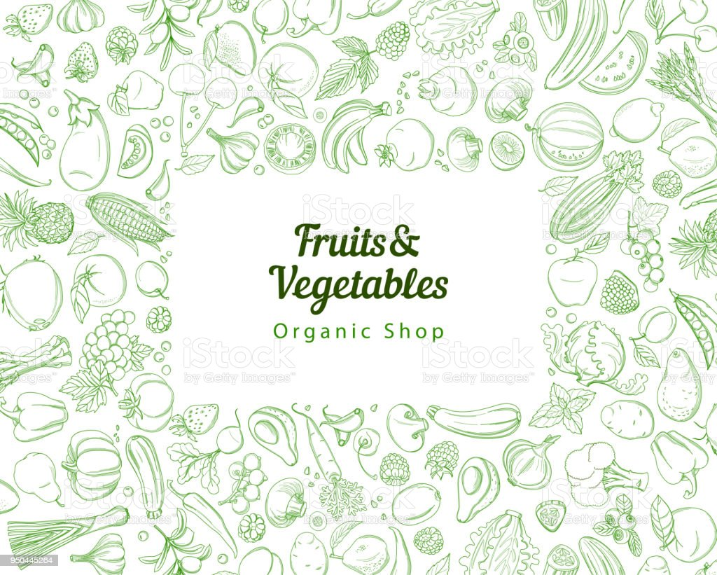 Frame border background pattern green fresh tropical fruits and vegetables Frame border background pattern of green organic farm fresh tropical fruits and vegetables. Vector illustration. Sketch doodle outline line flat style design. White backdrop top view grocery products Agriculture stock vector