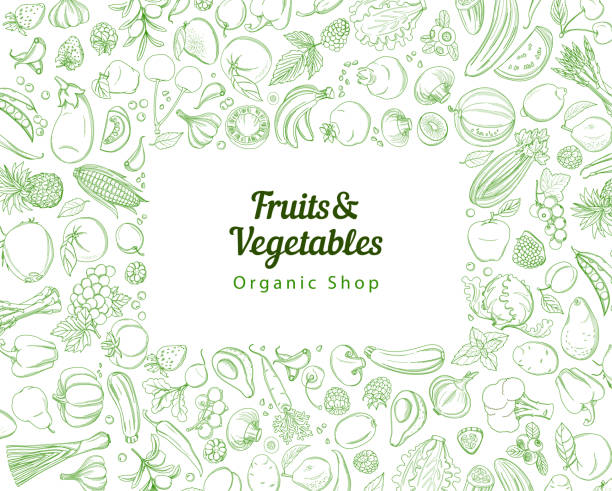 Frame border background pattern green fresh tropical fruits and vegetables Frame border background pattern of green organic farm fresh tropical fruits and vegetables. Vector illustration. Sketch doodle outline line flat style design. White backdrop top view grocery products fruit backgrounds stock illustrations