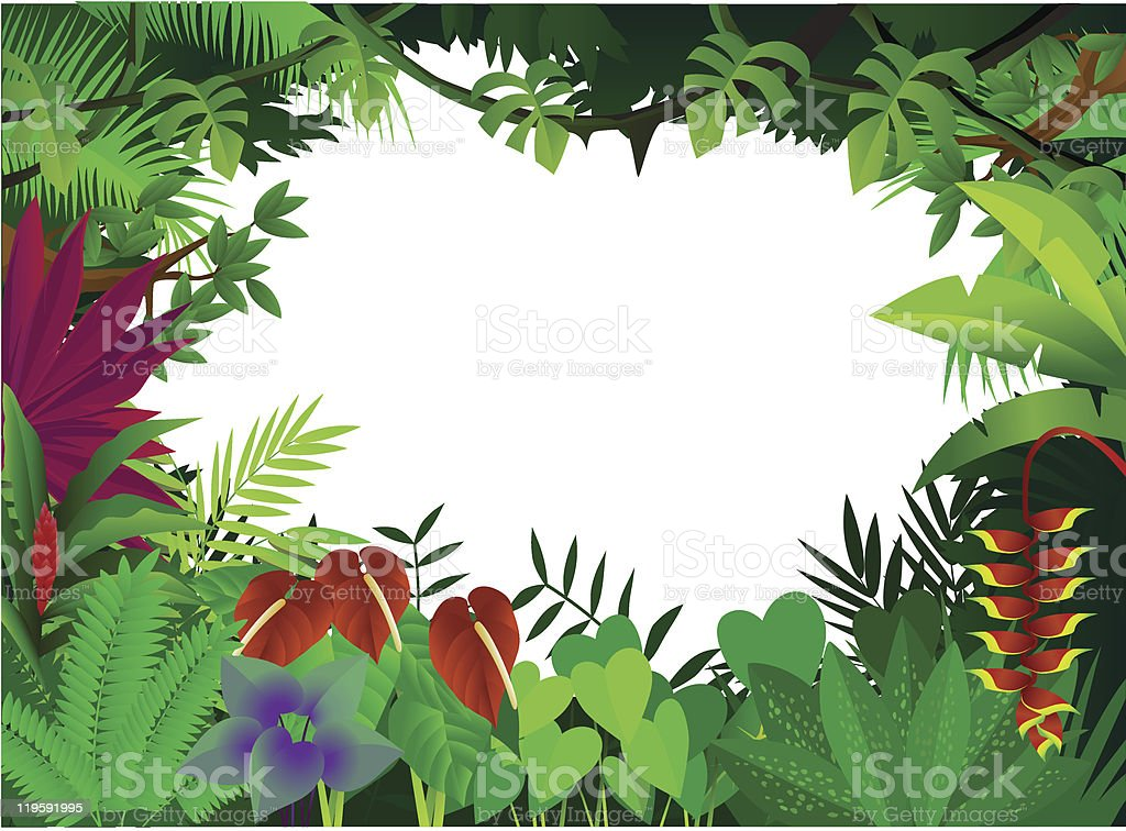 Frame border of tropical forest plants with white background vector art illustration
