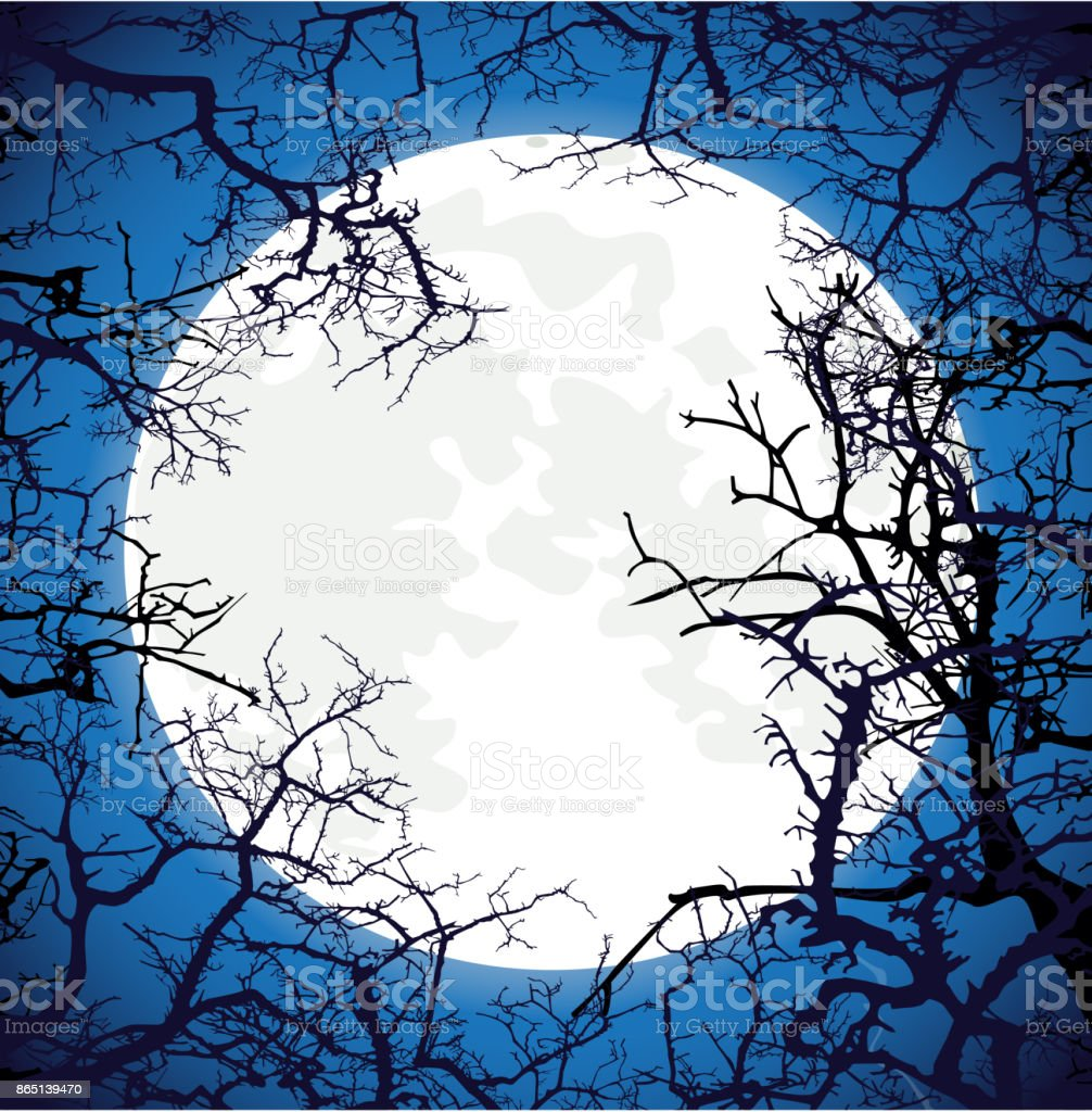 frame from silhouettes of bare branches of trees on full moon ba