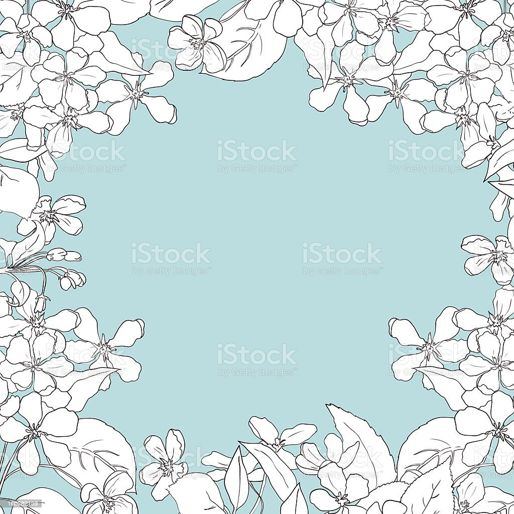 frame of apple tree blossoms royalty-free stock vector art