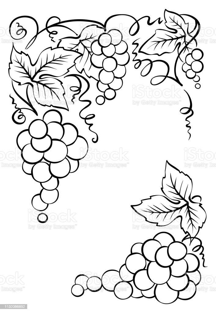 Vintage vector decoration for wine labels or wine list