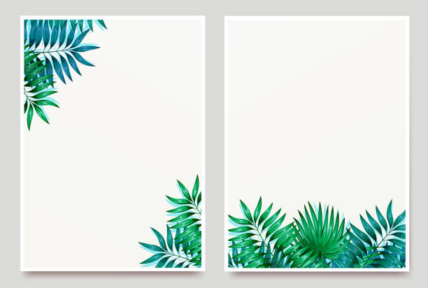 Frame of colorful tropical leaves. Concept of the jungle for the design of invitations, greeting cards and wallpapers. Vector illustration Frame of colorful tropical leaves. Concept of the jungle for the design of invitations, greeting cards and wallpapers. beach borders stock illustrations