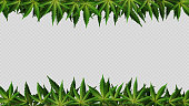 istock Frame of hemp leaves around horizontal empty space. Layout of a frame made of Cannabis Leafs for your creativity 1313184842
