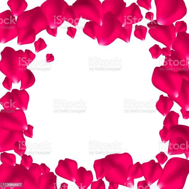 Frame of pink rose petals vector id1126668927?b=1&k=6&m=1126668927&s=612x612&h=9reuzogimxjmt5puwu8h2vzd2bxnjtiujv1kgiaicb8=