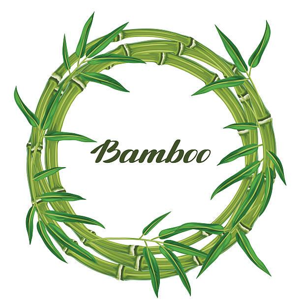 illustrazioni stock, clip art, cartoni animati e icone di tendenza di telaio con foglie e piante di bambù. progettazione per carte, flayers - forest bathing