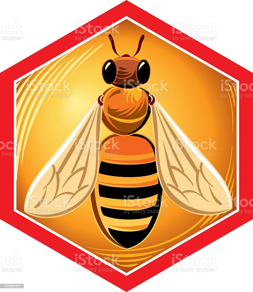 frame with bee royalty-free stock vector art