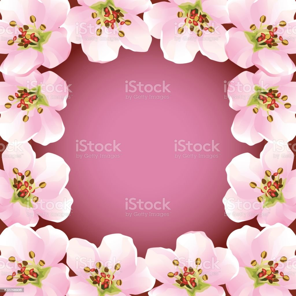 Rahmen Mit Blühenden Sakura Japanischen Kirschbaum Stock Vektor Art ...