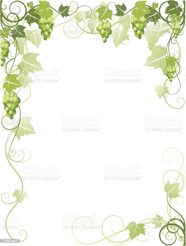 Frame with grapes vector art illustration