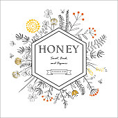 Frame with doodle honey flowers and bees. Floral vector illustration. Meadow plants graphic