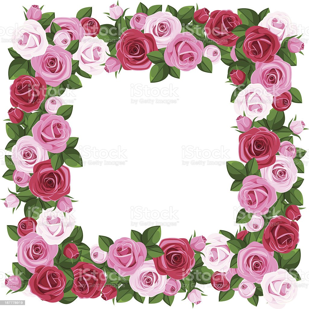 Frame with red and pink roses. Vector illustration. royalty-free stock vector art