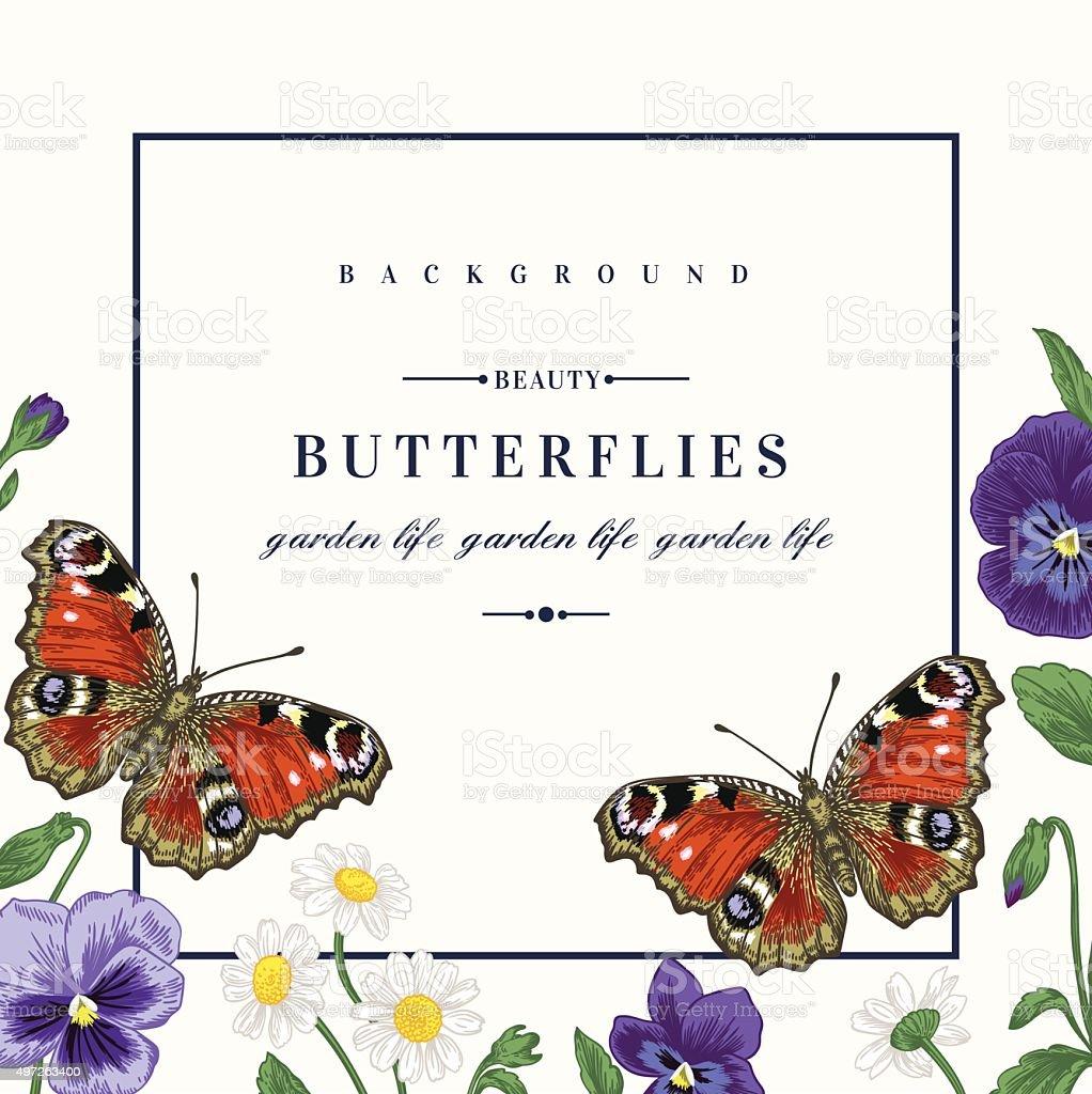 Sommerrahmen Mit Blumen Und Schmetterling Stock Vektor Art und mehr ...