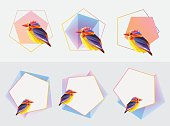 frames ornamented with abstract colorful bird and polygonal shapes