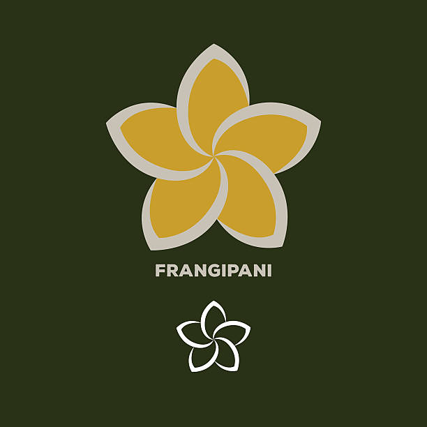 frangipani flower logo vector frangipani flower logo vector frangipani stock illustrations