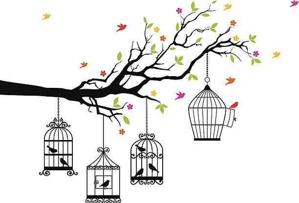 illustrations, cliparts, dessins animés et icônes de gratuit et se compose de cages oiseaux, vecteur - dessin cage a oiseaux