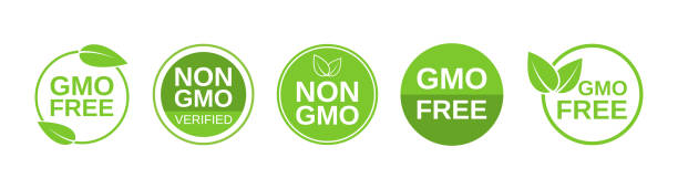 GMO free icons. Non GMO label set. Healthy organic food concept. No GMO design elements for tags, product packag, food symbol, emblems, stickers. Vegan, bio. Vector illustration GMO free icons. Non GMO label set. Healthy organic food concept. No GMO design elements for tags, product packag, food symbol, emblems, stickers. Vegan, bio. Vector illustration. genetic modification stock illustrations