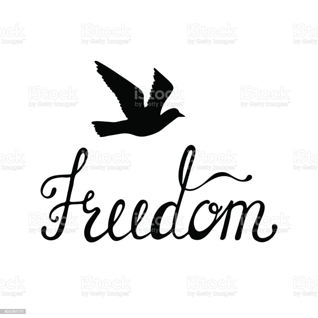 Freedom. Inspirational quote about happy. Modern calligraphy phrase with hand drawn silhouette bird. vector art illustration