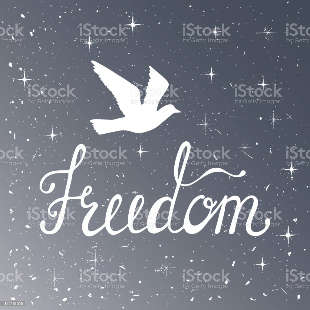 Freedom. Inspirational quote. Modern calligraphy phrase with silhouette bird. Night sky pattern. vector art illustration